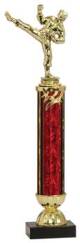 LARGE MARTIAL ARTS TROPHY