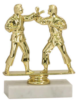 DOUBLE MARTIAL ARTS FIGURE TROPHY
