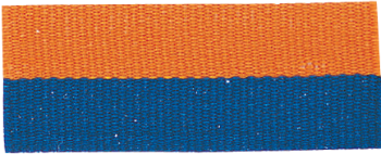 BLUE/ORANGE NECK RIBBON WITH SNAP CLIP