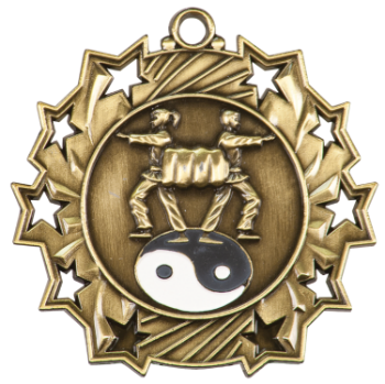 Martial Arts Ten Star Medal
