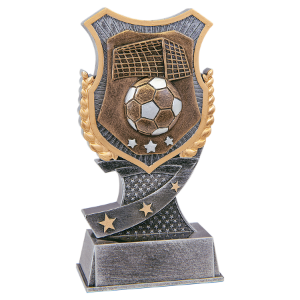 Soccer 6 Shield Award
