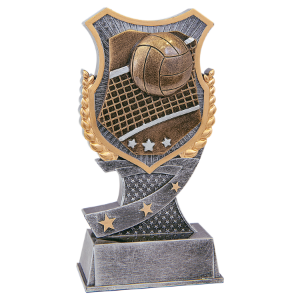 Volleyball 6 Shield Award
