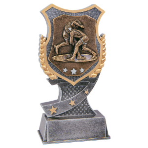 Wrestling 6 Shield Award