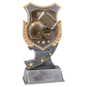 Football 7 Shield Award