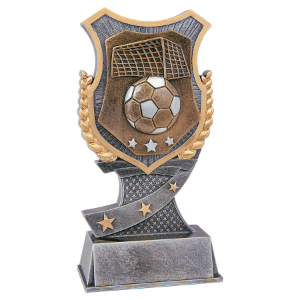 Soccer 7 Shield Award