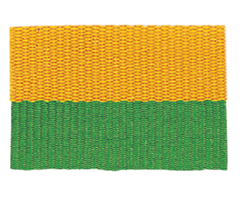 Green/Gold Neck Ribbon with Snap Clip