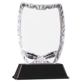 Shield Sculpted Ice